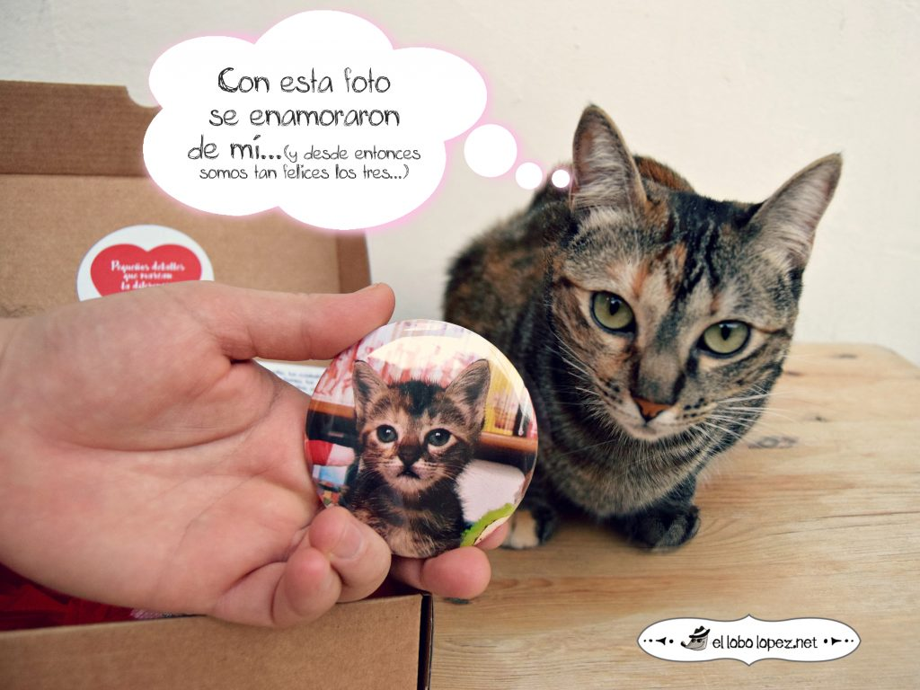 MASCOTA BOX DE EL LOBO LÓPEZ